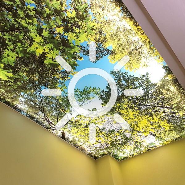 Deckenspannsystem mit Beleuchtung (Art. 1054)