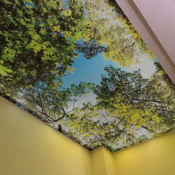 Deckenspannsystem ohne Beleuchtung (Art. 1014)